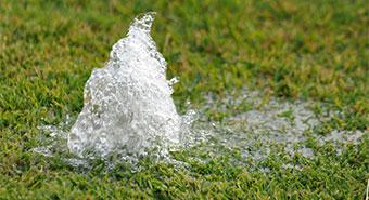 Sprinkler Repair Warning Signs