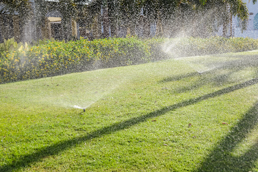 Coastal Irrigation shares how to irrigate during a dry winter in Southwest Florida